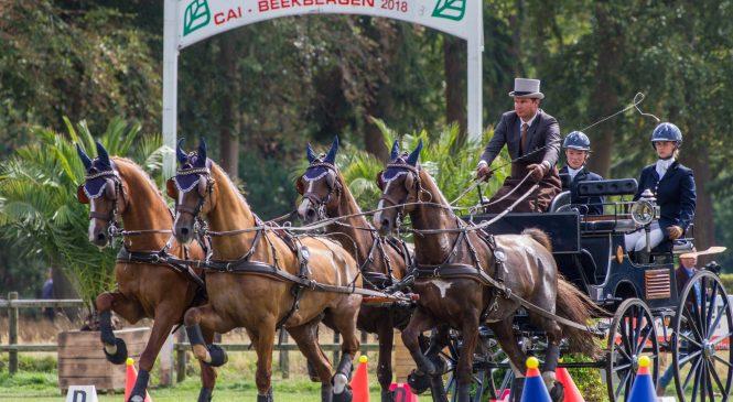 Paardenspektakel Beekbergen: bijzonder dagje uit voor het hele gezin