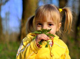 Kinderwandeling op de Loenermark