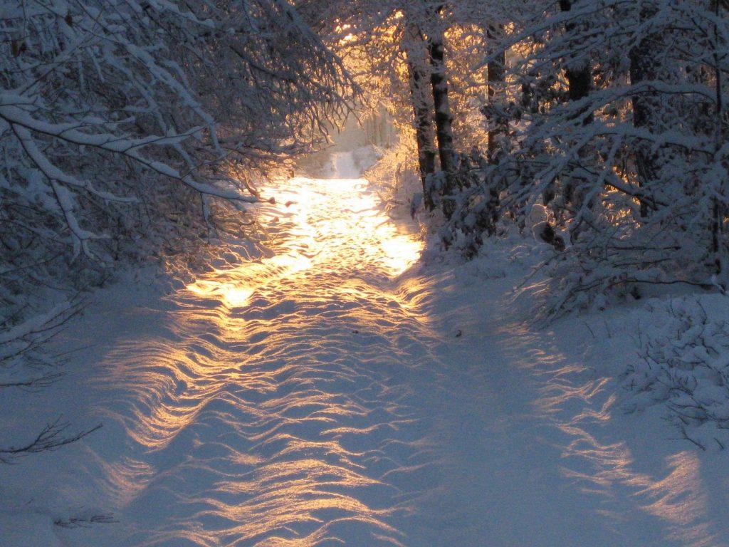 Winterwandeling Bruggelen