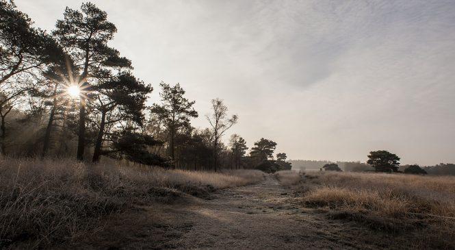 Excursie Loenermark 'Verdwenen vaardigheden'