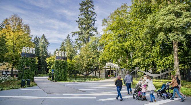 College wil parkeeroplossing bij AGOVV permanent maken