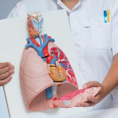Informatieavond: diagnose en behandeling van longkanker, hoe gaat dat in de Stedendriehoek?